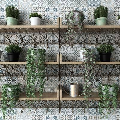 盆栽, 绿植, 装饰柜架, 花盆