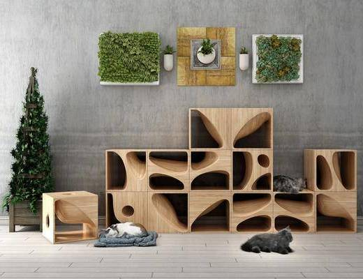 宠物猫舍, 猫, 植物绿植, 盆栽, 现代