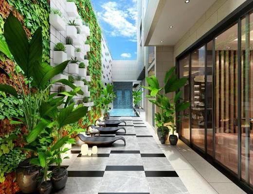 花园, 庭院, 户外庭院, 现代户外庭院, 绿植盆栽