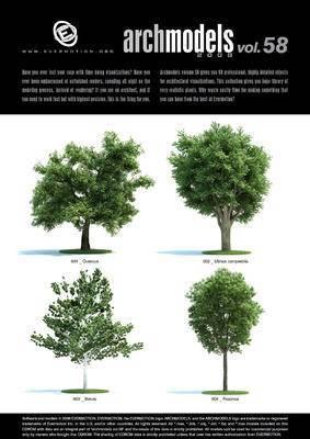 树, 树木, 植物