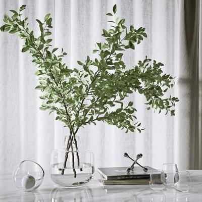现代花瓶, 花瓶摆件, 绿植