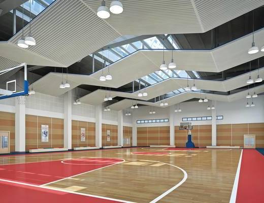 体育馆, 篮球场, 篮球架