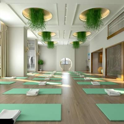 瑜珈馆, 瑜珈室, 休闲室, 健身房, 瑜珈垫, 瑜珈球