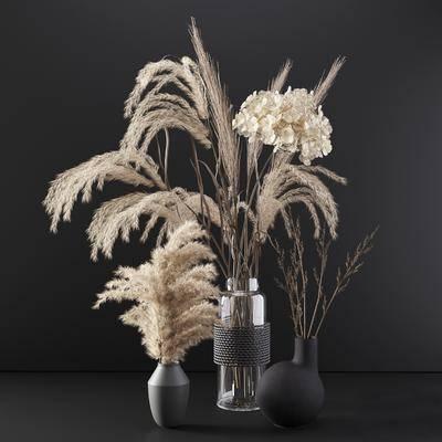 植物, 花瓶, 摆件组合