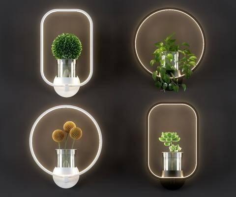 壁灯组合, 绿植水培, 绿植植物, 盆栽, 北欧