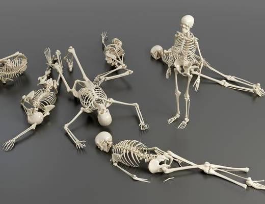现代, 骷髅, 骨架