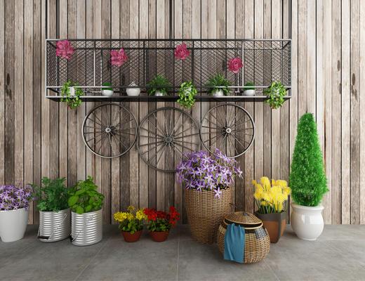 植物, 盆栽, 装饰品