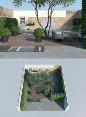 花园庭院, 树木, 绿植, 植物, 现代