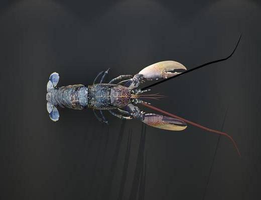 龙虾, 现代