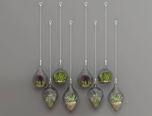 现代绿植, 绿植, 盆栽, 植物