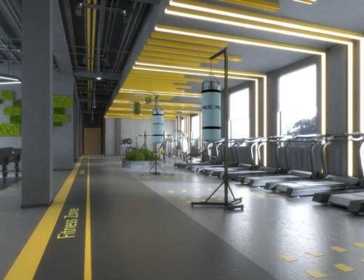 健身房, 健身室, 跑步机, 健身器材, 现代