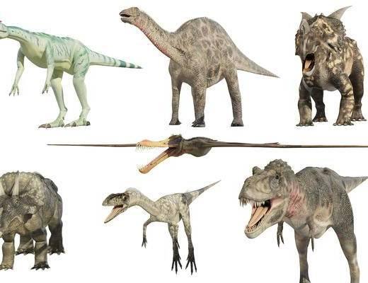 恐龙, 暴龙, 动物