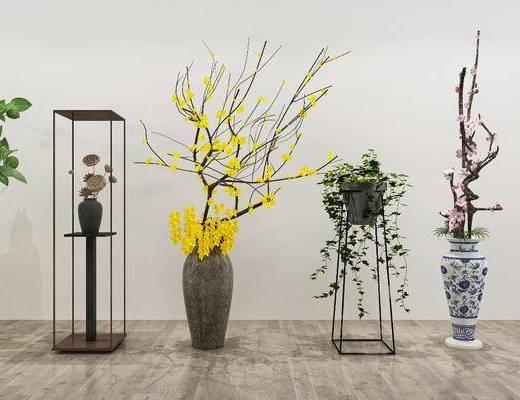 植物盆栽, 花瓶花卉, 干支, 现代