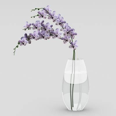 花卉, 花瓶, 现代