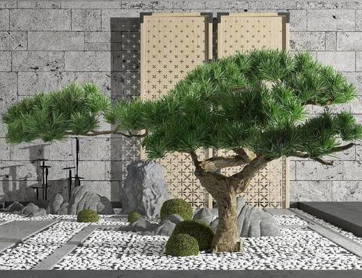 松树, 植物, 摆件组合, 假山