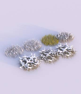 花草, 户外, 植物, 雪景, 枯草, 现代, 双十一