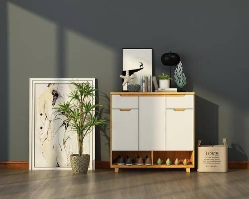 现代, 鞋柜, 鞋子, 绿植, 饰品, 挂画
