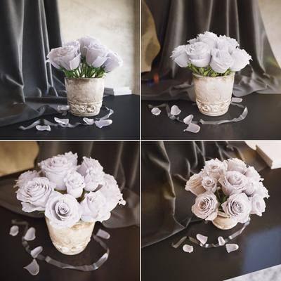 盆栽, 花盆, 花卉, 花, 现代