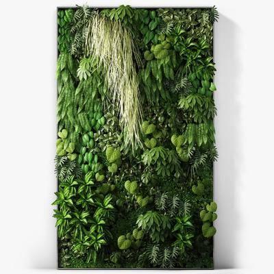 背景墙, 植物绿植, 现代