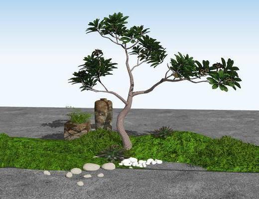 假山, 植物, 景观小品