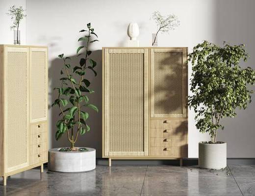 現代植物裝飾柜