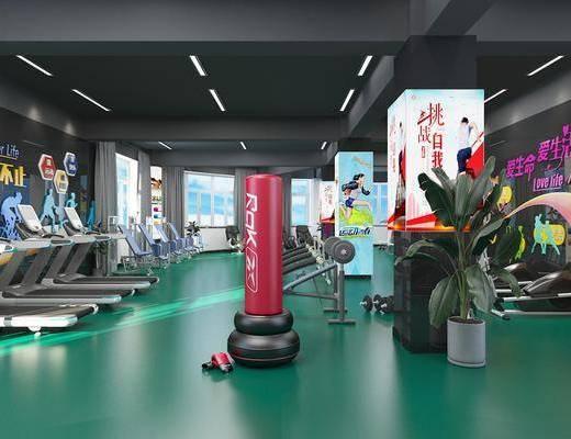 健身室, 健身器材, 盆栽, 墙饰, 绿植植物, 现代