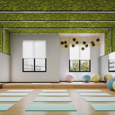 现代, 健身房, 遇见, 吊饰, 植物, 瑜伽垫, 健身球