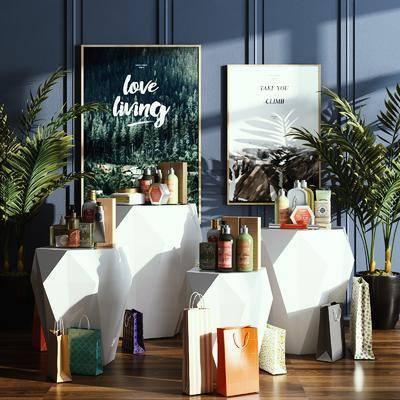 摆件组合, 装饰画, 植物, 展示台