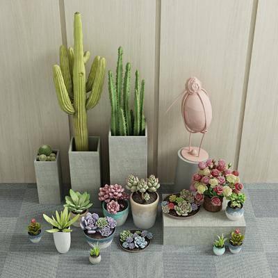 绿植盆栽, 盆栽, 绿植, 花卉, 盆景, 现代
