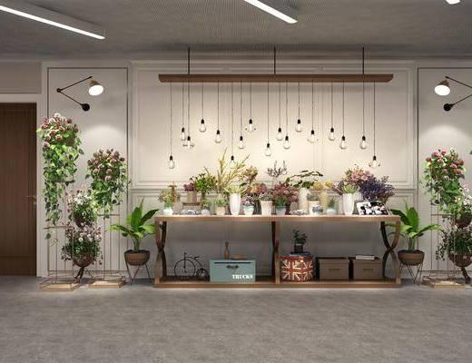 盆栽花卉, 花瓶花卉, 盆栽, 绿植植物, 吊灯组合, 植物花瓶, 多肉组合, 壁灯, 摆件, 装饰品, 陈设品, 现代