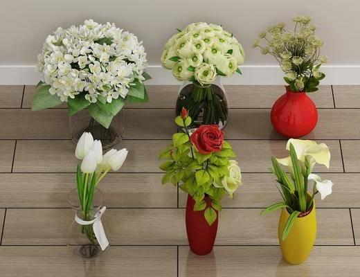 盆栽, 花卉, 绿植植物, 现代