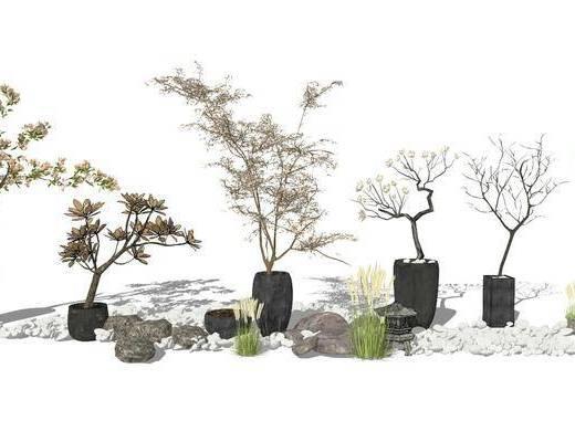 盆栽, 植物, 花盆, 枯树组合