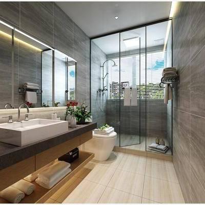 卫生间, 淋浴房, 坐便器, 镜柜, 绿植, 现代