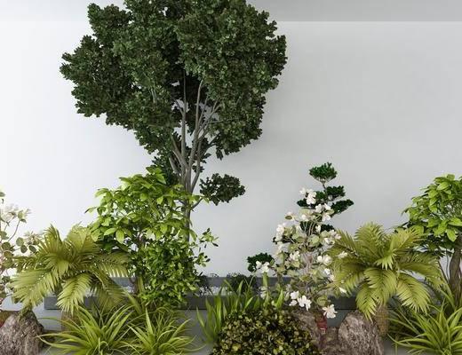 景观小品, 花草, 树木, 植物, 现代