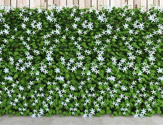 植物墙, 现代