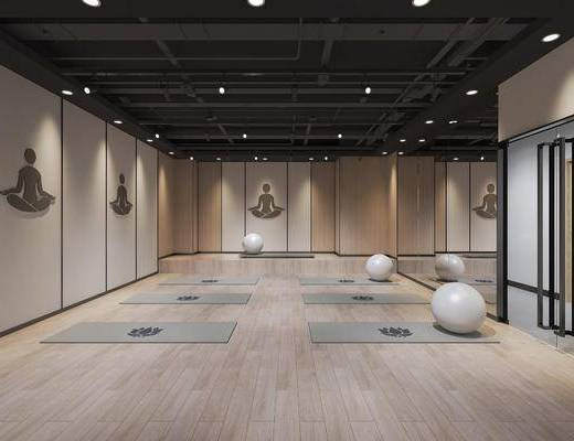 健身房, 瑜伽垫, 瑜伽球, 泰式瑜伽