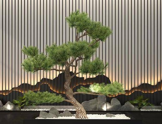 园林景观, 景观小品, 植物