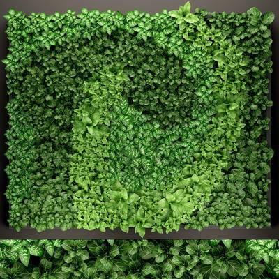 植物墙, 植物, 绿植, 植物背景墙, 现代