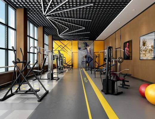 现代, 健身室, 健身器材, PVC地面