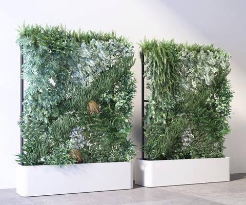 现代绿植墙盆栽