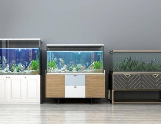 现代鱼缸, 鱼, 柜子, 水中植物