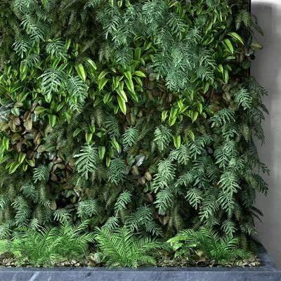 植物背景墙, 植物墙, 背景墙, 植物, 绿植, 现代