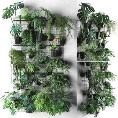 绿植盆栽, 植物墙, 植物墙组合, 盆栽组合, 现代
