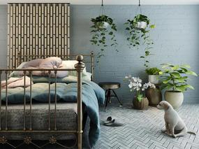 后现代, 植物盆栽, 狗, 边几, 床具组合